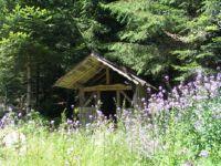 Gatterwaldhtte