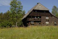 schwarzwald-0072